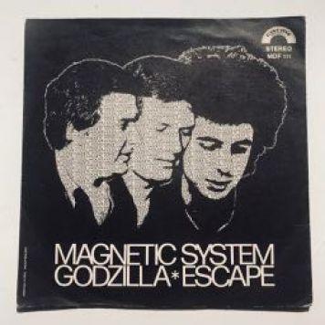 magneticsystem